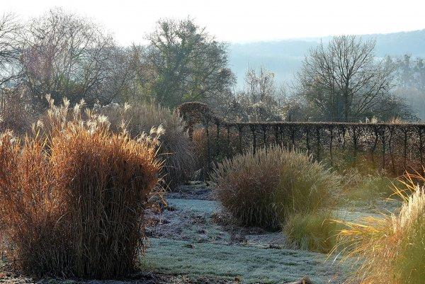 L'hiver au Jardin botanique de la Presle